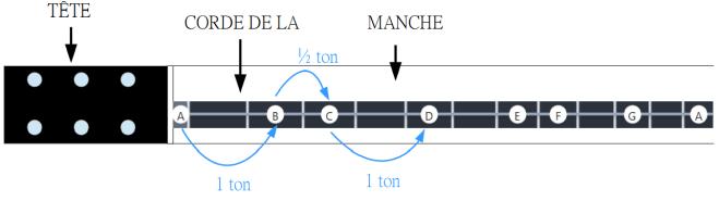 Schéma corde de La dans la gamme diatonique