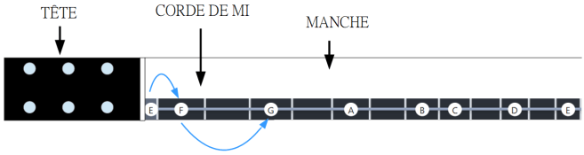 Schéma de la corde de MI sur la gamme diatonique
