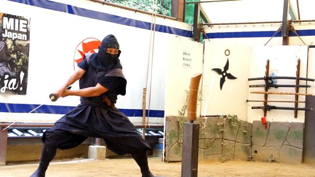 ninja-iga