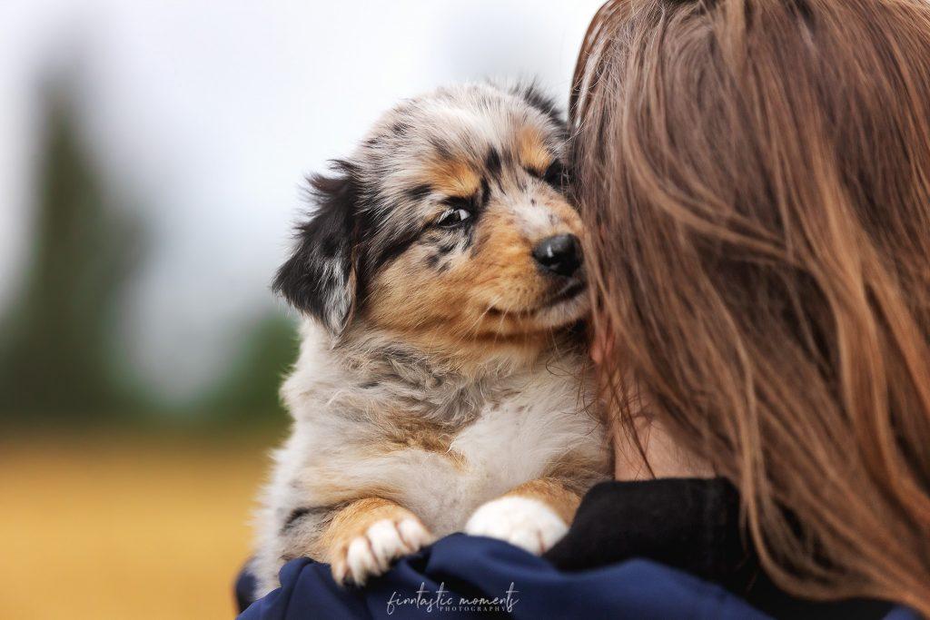 Welpe auf Schulter von Besitzerin