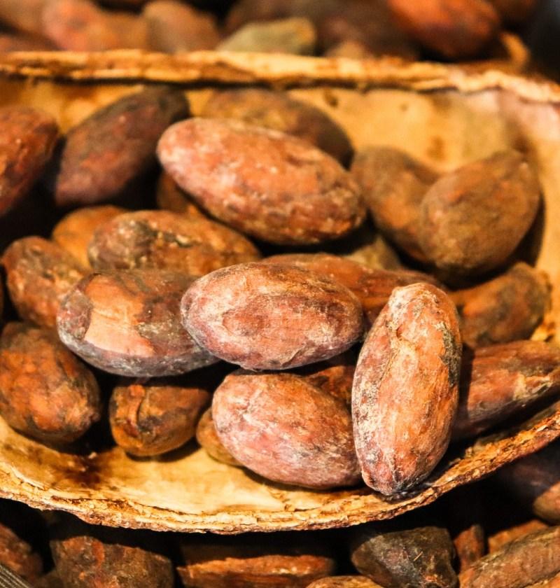 cacao 3995994 1920