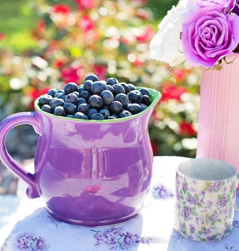blueberries 864627 1920