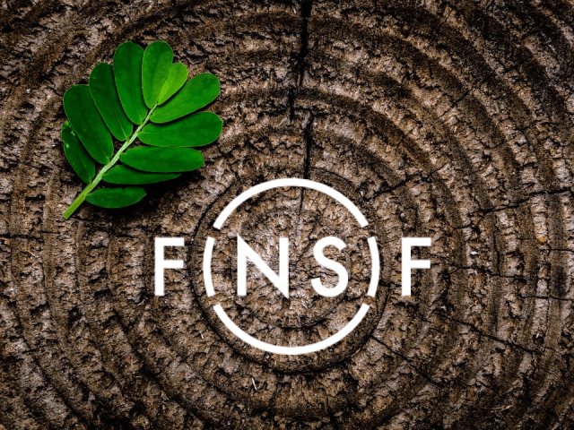 Finsif grows with Finnish sustainable investing