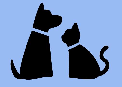 ¿Adoptas una mascota? ¡Adoptas un nuevo presupuesto!