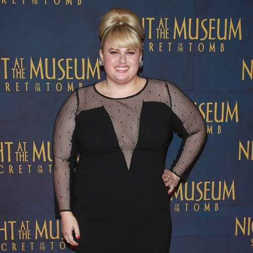 Rebel-Wilson-Dress-Night-Museum-3-Premiere