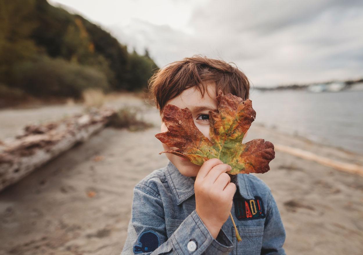 boy looking through fall leaf
