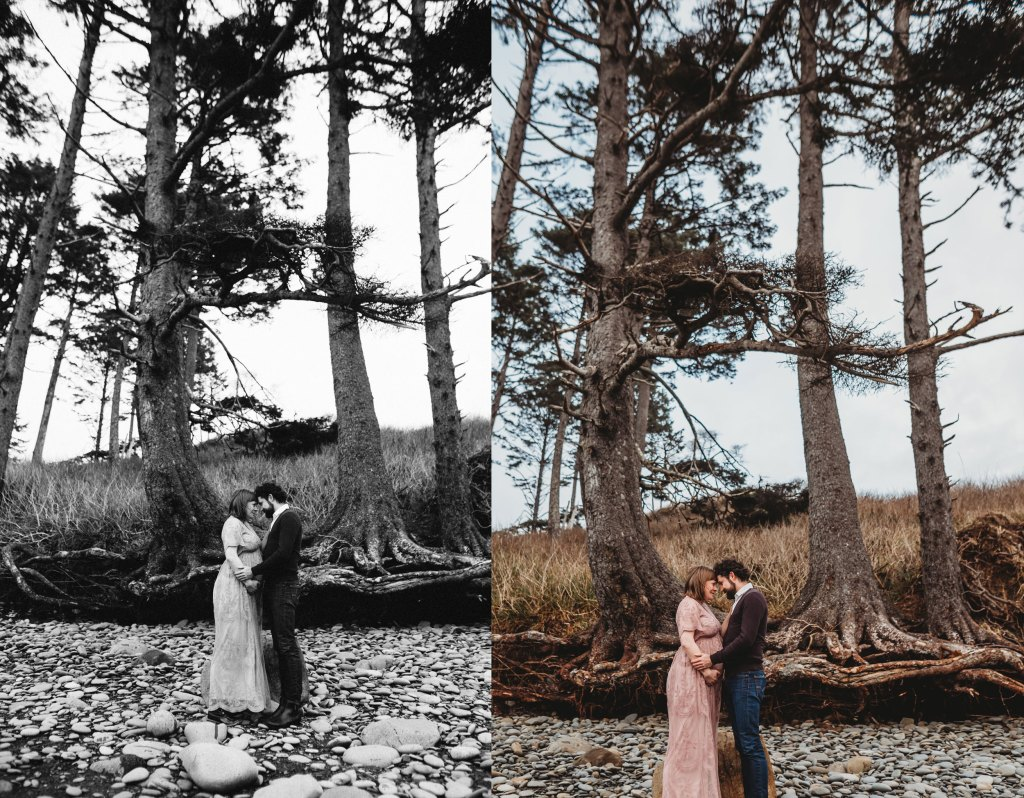 huge trees at olympic national park session for seattle maternity session