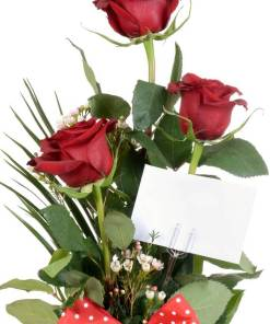 zoom di 3 rose rosse confezionate a ciriè