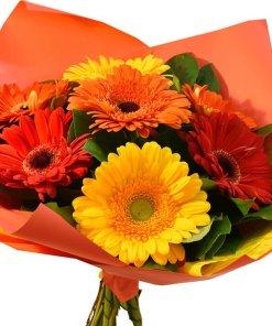 lively gerbere arancioni e rosse zoom