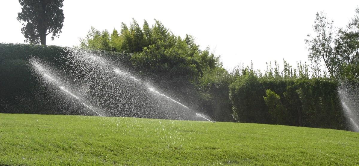 prova irrigazione