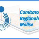 26-02-2020 COMUNICATO UFFICIALE N. 6