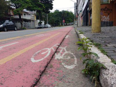 Trecho da ciclovia da rua João Moura, na região da Vila Madalena, zona oeste de São Paulo. Foto: Léo Arcoverde/Fiquem Sabendo