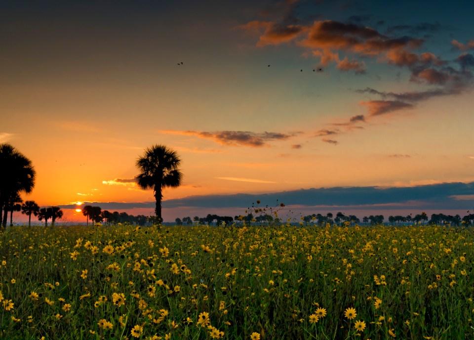 Central Florida's best landscape photo location