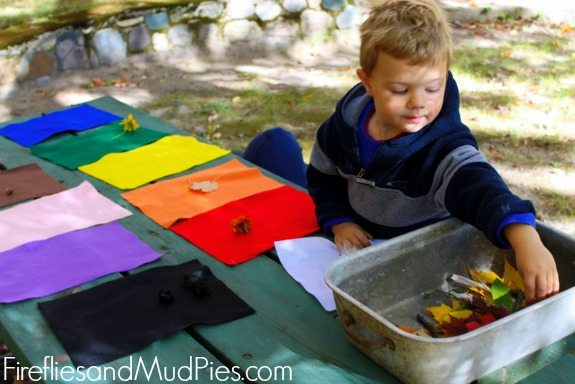 learning colors through nature 3