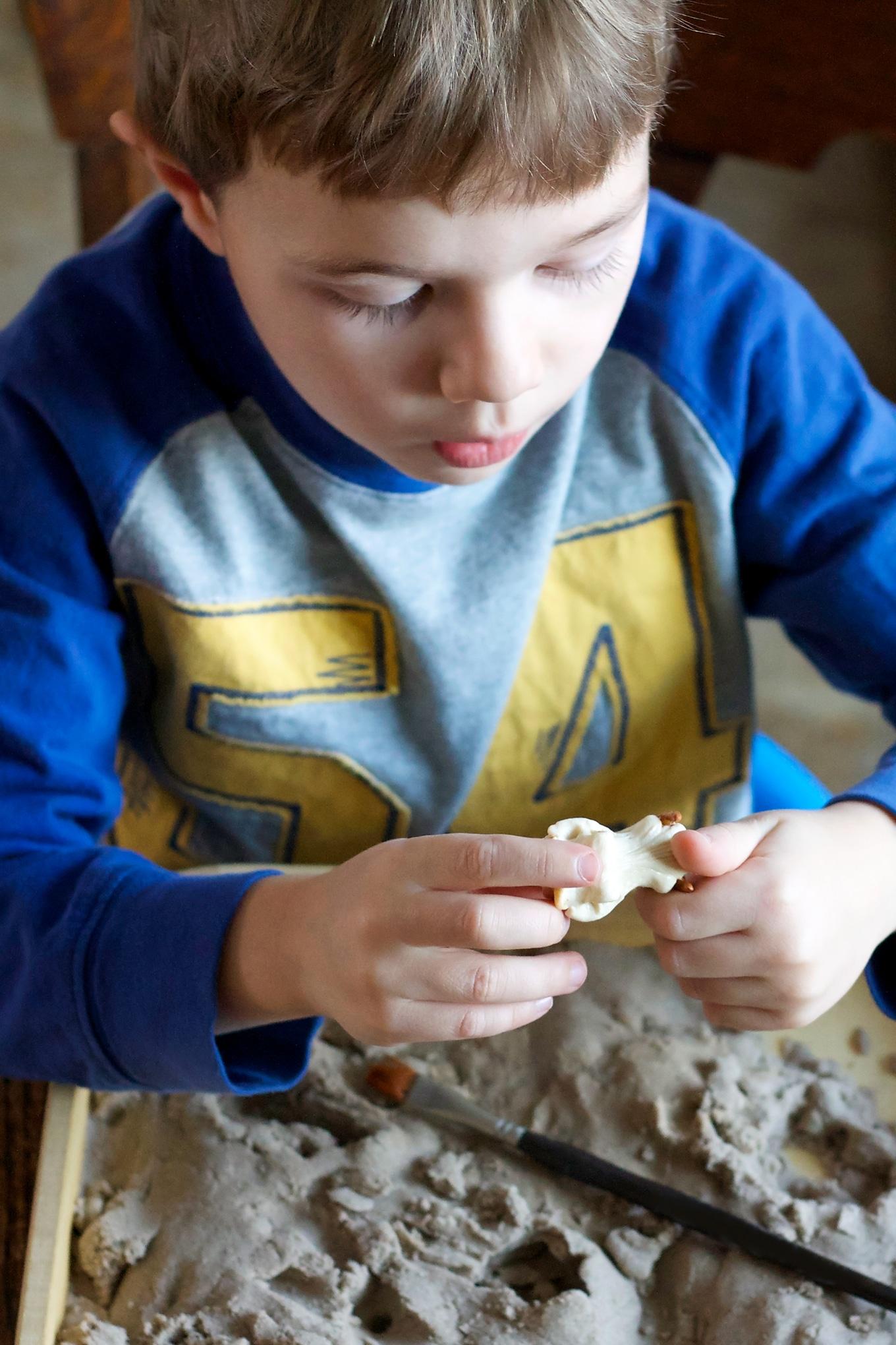 Preschooler Digging for Toy Dinosaur Skeletons