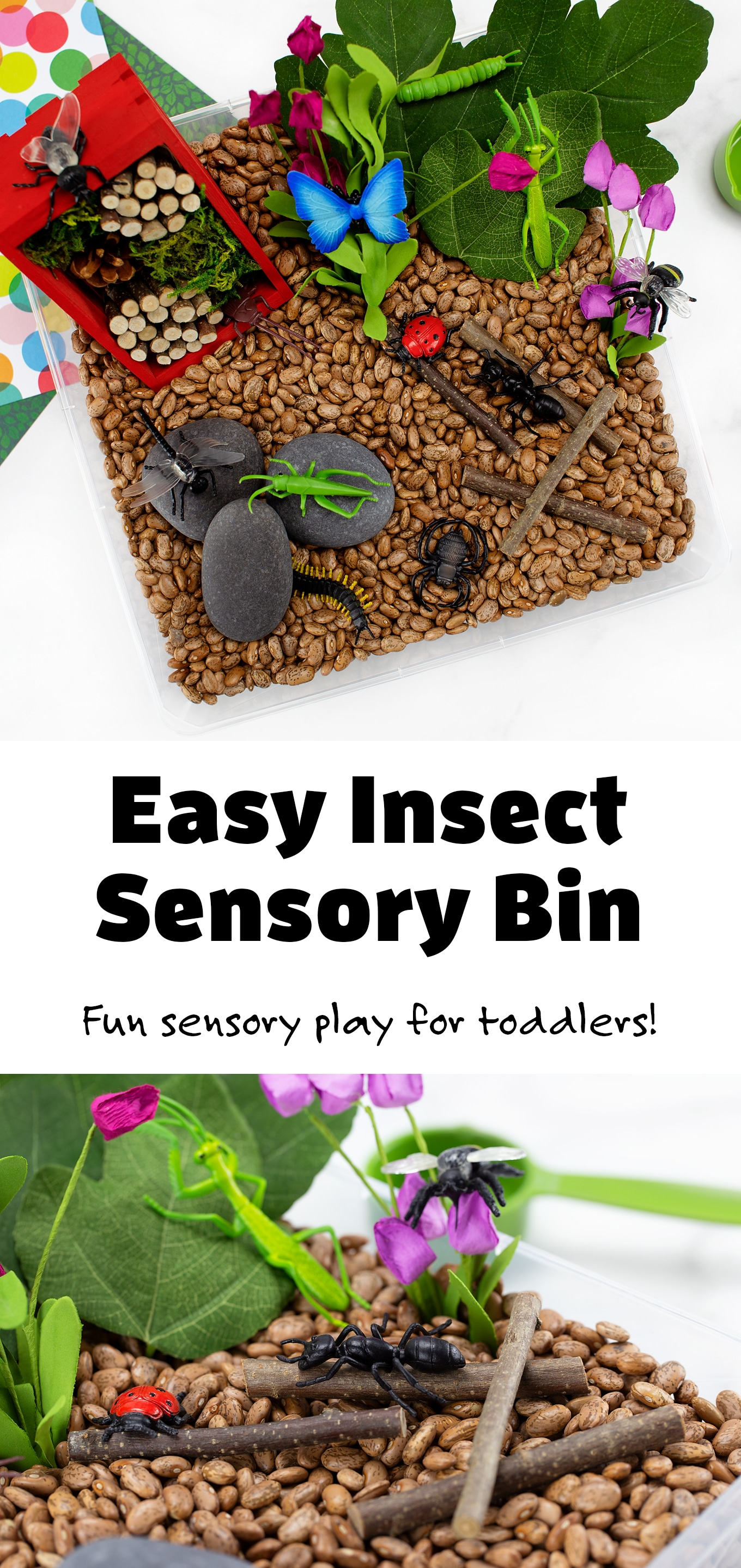Preschoolers and toddlers will enjoy playfully learning all about insects and bugs with this easy and fun bug sensory bin! #preschool #toddlers #ideas #bugsensorybin #preschoolbugideas #sensorybin via @firefliesandmudpies