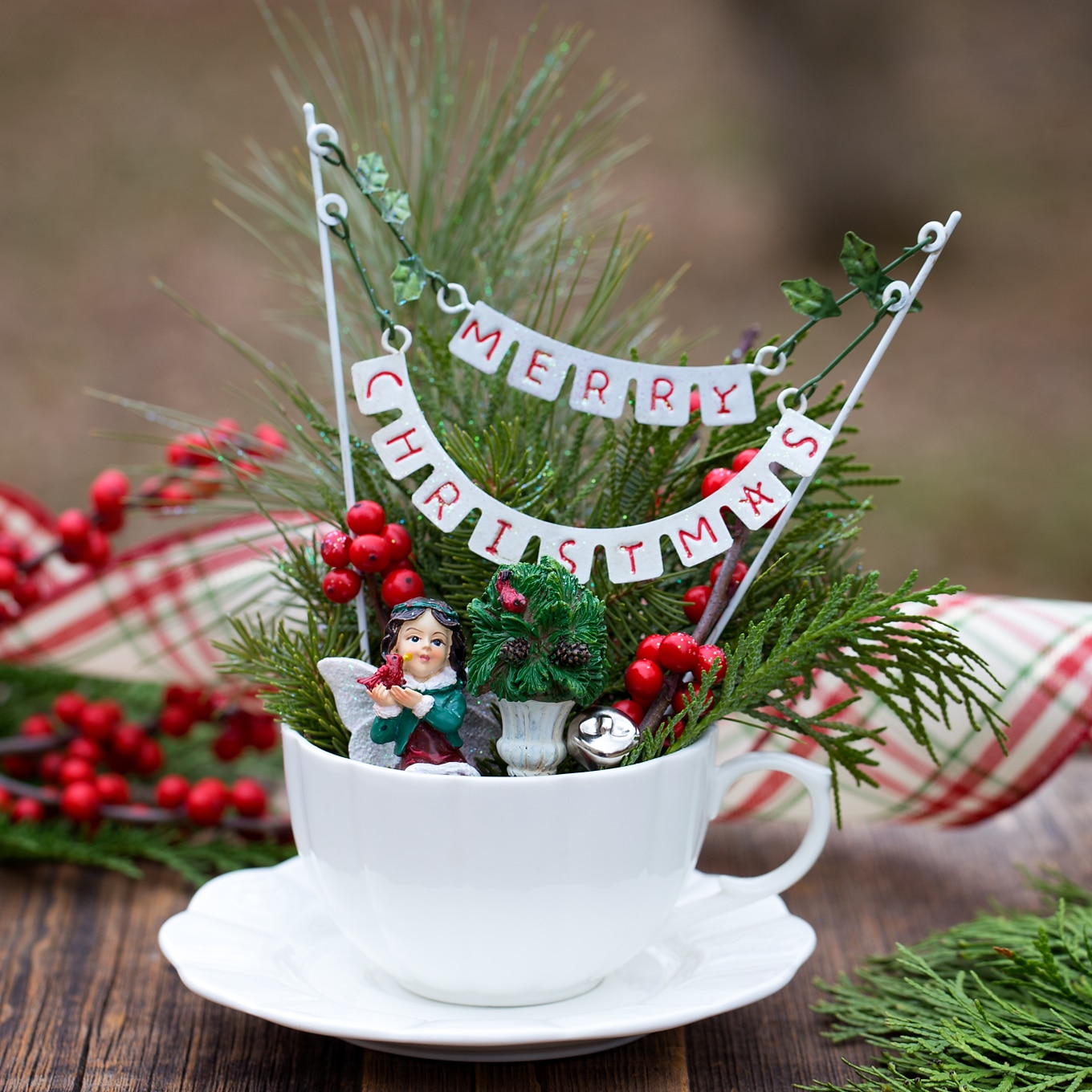 How to Make a Christmas Teacup Garden
