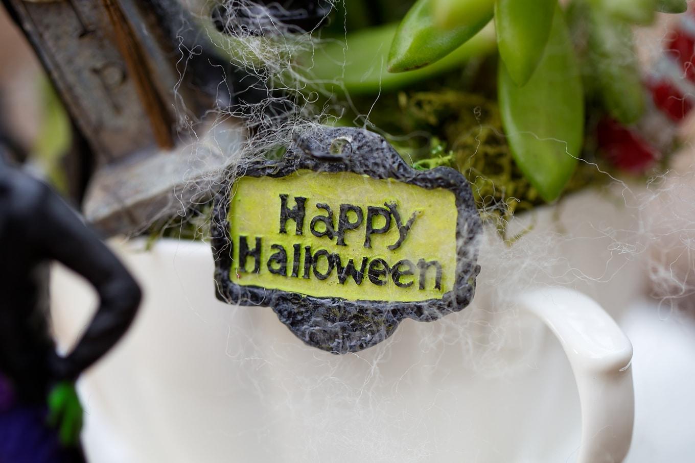 Happy Halloween Teacup Garden Sign
