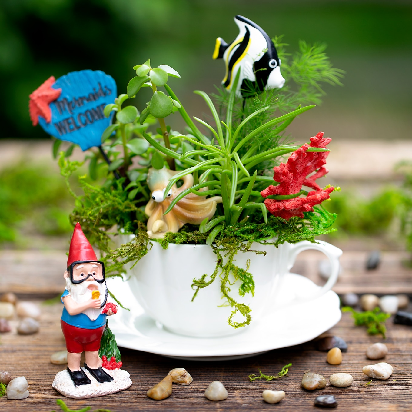 Under the Sea Teacup Garden