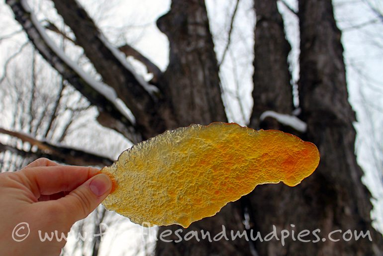 Sugar on Snow   Fireflies and Mud Pies