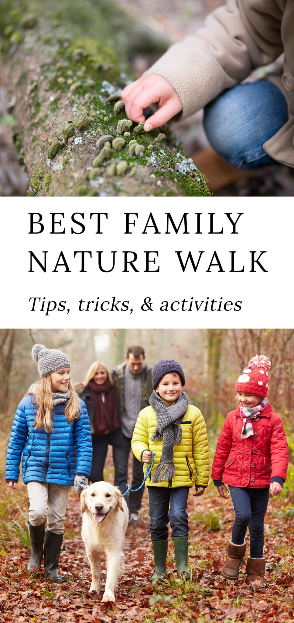 Tips and Tricks for the Best Family Nature Walks