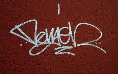 Arte, via i graffiti con l'uso degli enzimi