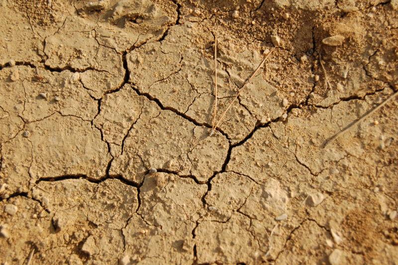 Nuove procedure per le imprese riguardo alla siccità (foto autore: KoS)