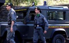 Toscana, al Corpo forestale dello Stato il Pegaso d'oro della Regione