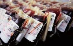 Sangue infetto in Toscana: «Fare presto, il virus non aspetta»