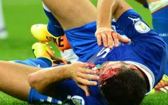 Fiorentina, Pasqual vuol giocare. In dubbio anche Savic