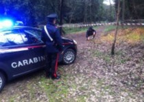 I carabinieri hanno trovato il cadavere carbonizzato dell'agricoltore