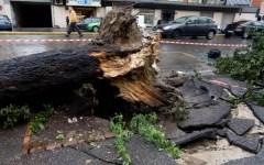 Toscana, il forte vento provoca decine di danni