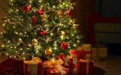 Natale, Coldiretti: albero vero per 4,5 milioni di famiglie