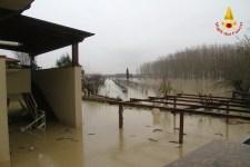 Una piantagione alluvionata nel pisanoUna piantagione alluvionata nel pisano