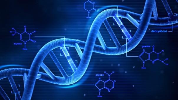 Un nuovo algoritmo matematico usato per combattere le malattie degenerative