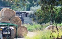Pisa: tragedia sul lavoro: camionista muore schiacciato dalle balle di fieno
