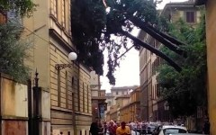 Firenze, nubifragio 1 agosto 2015: esenzione Cosap prorogata al 31 marzo 2016