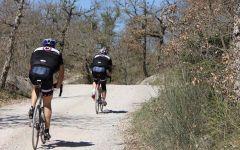 Toscana: in bici nel Chianti con la Gran fondo del Gallo Nero