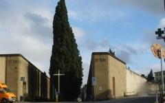 Firenze: il cimitero di Trespiano gravemente danneggiato dal vento. E' chiuso da giovedì