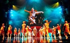 Fine settimana dell'8 e 9 novembre a Firenze e in Toscana, gli appuntamenti top: dal Cirque du Soleil al Pisa Book Festival