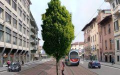 Firenze, tramvia allo Statuto. Presidio contro il taglio degli alberi: «È uno scempio»
