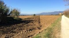 Ancora incertezze sul pagamento dell'Imu agricola