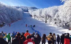 Toscana: sci (tanta neve sulle piste, dall'Abetone all'Amiata) e Carnevale. Gli appuntamenti del week end del 14 e 15 febbraio