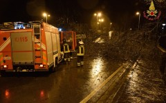 Firenze: a fuoco un casolare in via del Guarlone. Era rifugio di senza casa. Indagine della Digos