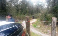 Donna uccisa con 10 coltellate nella pineta fra Torre del Lago e Vecchiano