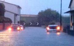 Pisa, nubifragio: anziana rischia di annegare in auto, salvata da due carabinieri