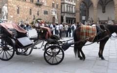 Firenze, vetturino multato: conduceva la carrozza a cavalli col caldo a 39 gradi
