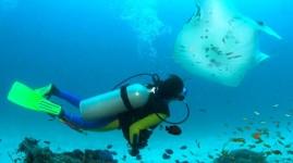 Un sub ha perso la vita durante un'immersione al largo di Calafuria