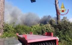 Lucca, Santa Maria del Giudice: vasto incendio nella pineta del Monte Pisano