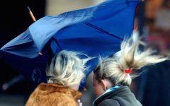 Firenze, meteo: scattato l'alert system per il vento forte. Il messaggio del Sindaco Nardella